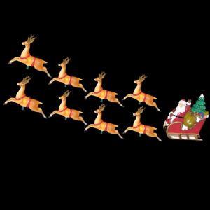 11 ft. 10-Light Santa Sleigh and Eight Reindeer Light Set