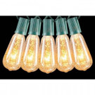 9 ft. 10-Light Incandescent Warm White Silver Mercury Glass Edison-Style Light Set