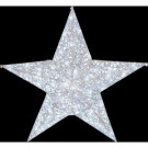 36 in. Clear LED Lighted Open Wire Star